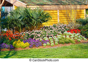 Blossoming varicolored flowerbed. - Blossoming varicolored...