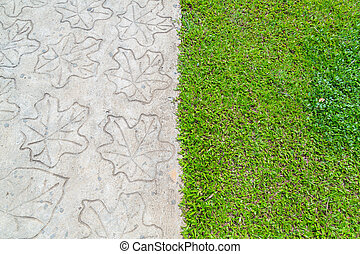 Stone path with grass