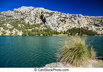 mountain lake Panta de Gorg Blau - view of mountain lake...