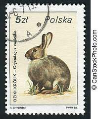 postmark - POLAND - CIRCA 1986: Hares and jackrabbits are...