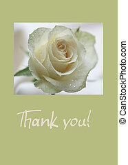 white rose card - print and post - Thank you