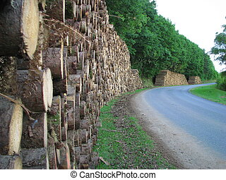 wood, paper, industry, exploitation - Vassiviere in Limousin...