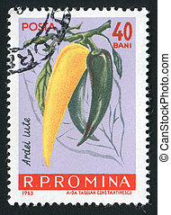 postmark - ROMANIA - CIRCA 1963: Hot pepper Vegetables hang...
