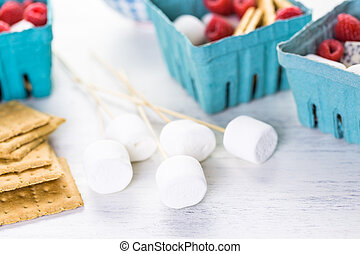Smores with white chocolate and fresh raspberries.