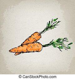 Fresh carrots. Vector illustration