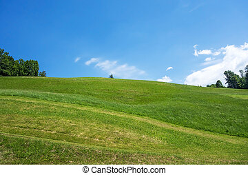 Green Hill Blue Sky - Vivid green grass and blue sky