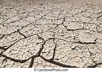 Dried Ground - Detail of the cracked ground - dry season