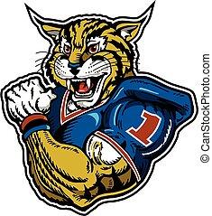 wildcat football player - muscular wildcat football player...