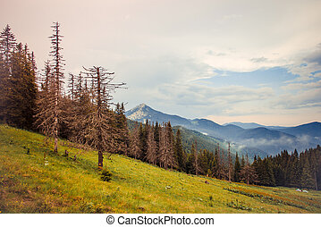 Carpathians - Sunset is in Carpathians