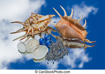 sea shells, decorative glass lying on the mirror and the...