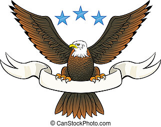 Bald eagle insignia - Vector illustration of a eagle