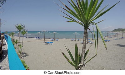 Tourist beach in Rhodes, 4K - Yucca trees on beach in Greece...
