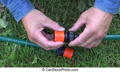 fixing and connecting watering hose - Two hands fixing and...