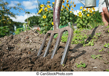 allotment - Stock Image - shot of digging at allotment on a...