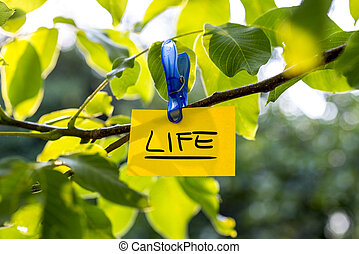 Beautiful vivacious life concept - yellow paper with LIFE...