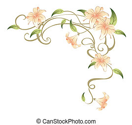 flower and vines - drawing of beautiful flower in a white...