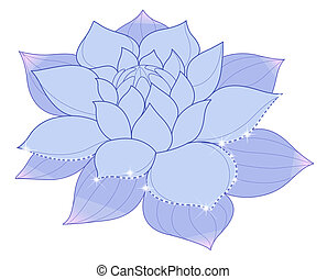 Blue lotus - drawing of blue lotus with flash in a white...