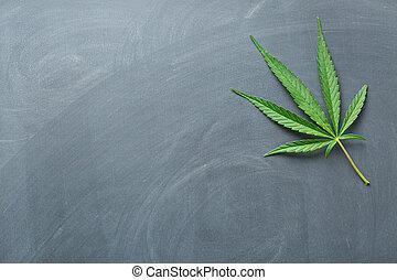 cannabis leaf on a chalkboard