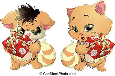 cats and podarok - kitten who holds a gift on a white...
