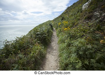 Narrow Path at Howth - Narrow worn path that contours Howth...