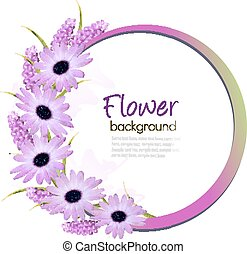Flower background with beautiful purple flowers.