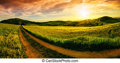 Rural landscape sunset panorama - Rural landscape panorama...