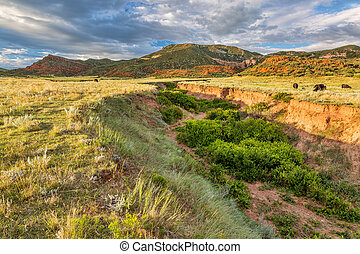 Colorado foothills at sunset - Red Mountain Open Space in...