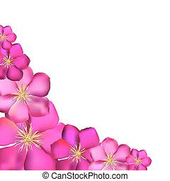Pink Clematis Background Vector Illustration EPS10