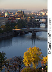 Prague Bridges Portrait