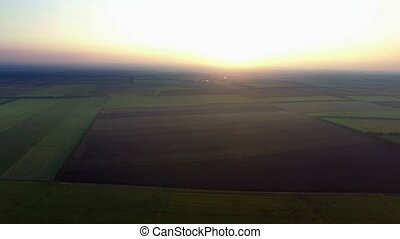 Flight to Quadrocopters Over a Field of Corn. Phantom 3...