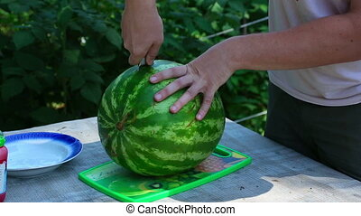 Ripe watermelon - Man cuts the big ripe watermelon