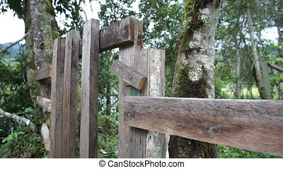 Man Opening Gate Close Up - Anonymous man opening a rustic...