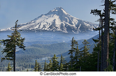 Beautiful Vista of Mount Hood in Oregon, USA - Majestic View...