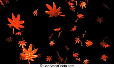 Fallen Leaves - Loop able Fallen Leaves On Black Background.