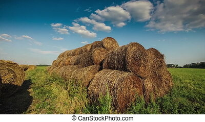 hay in a field at sunset