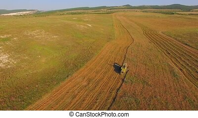 AERIAL VIEW Harvest Fields - AERIAL VIEW Harvesting of the...