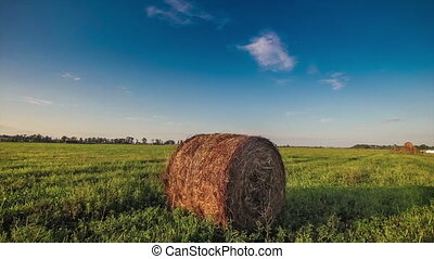 haystack - hay in a field at sunset nature timelapse Ukraine