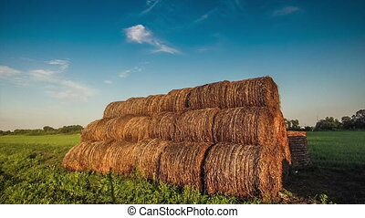 many rolls of hay hay in a field at sunset nature timelapse...