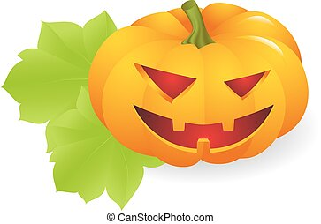 Pumpkin - Orange ripe pumpkin vegetable with on white...
