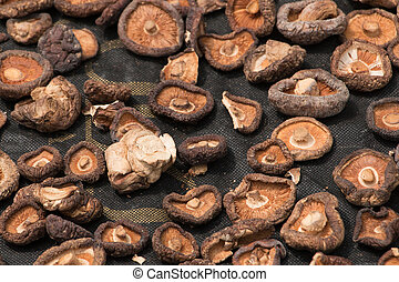 Chinese mushrooms laid out to dry i