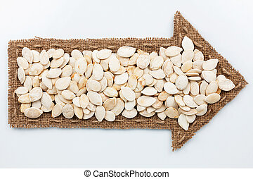 Pointer with pumpkin seeds, on white background