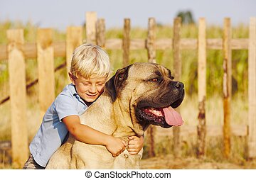 Little boy with large dog - Little boy is playing with his...