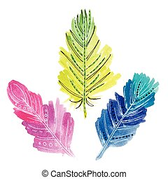 Set of three watercolors feathers