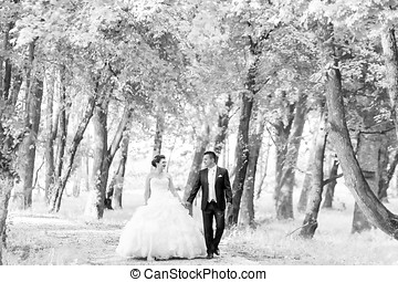 Newlyweds walking in nature bw - The bride and groom holding...