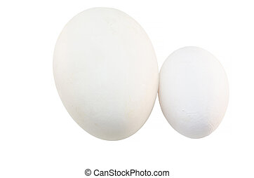 Chicken egg and Goose egg - Two eggs of different sizes -...