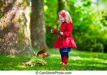 wenig, Fütterung, eichhörnchen,  Park, Herbst, m�dchen