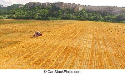 Grain Combine Harvester Working In Farm Field