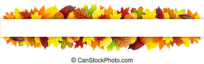 Colorful autumn leaves banner with clipping path