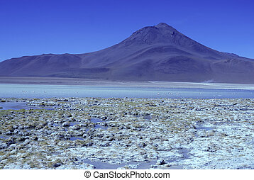 High altiitude Bolivian Altiplano