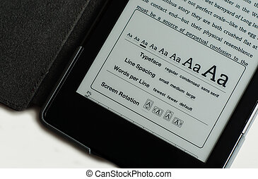 E-Reader Screen Options